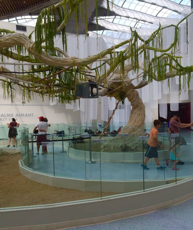 BioDome. What to do in Montreal with kids.
