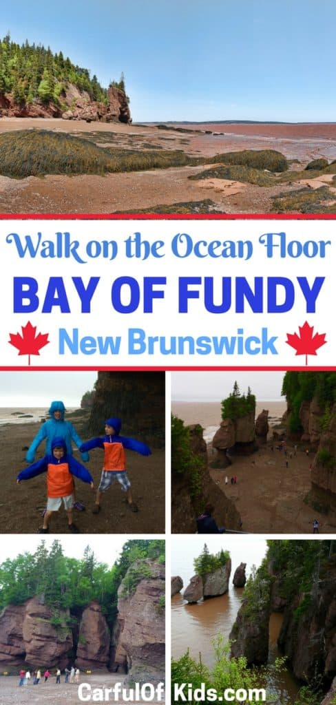 Head to the place with the largest tides in the world. Got all the details to place your trip to Canada's Bay of Fundy in New Brunswick like where to stay and what to do.