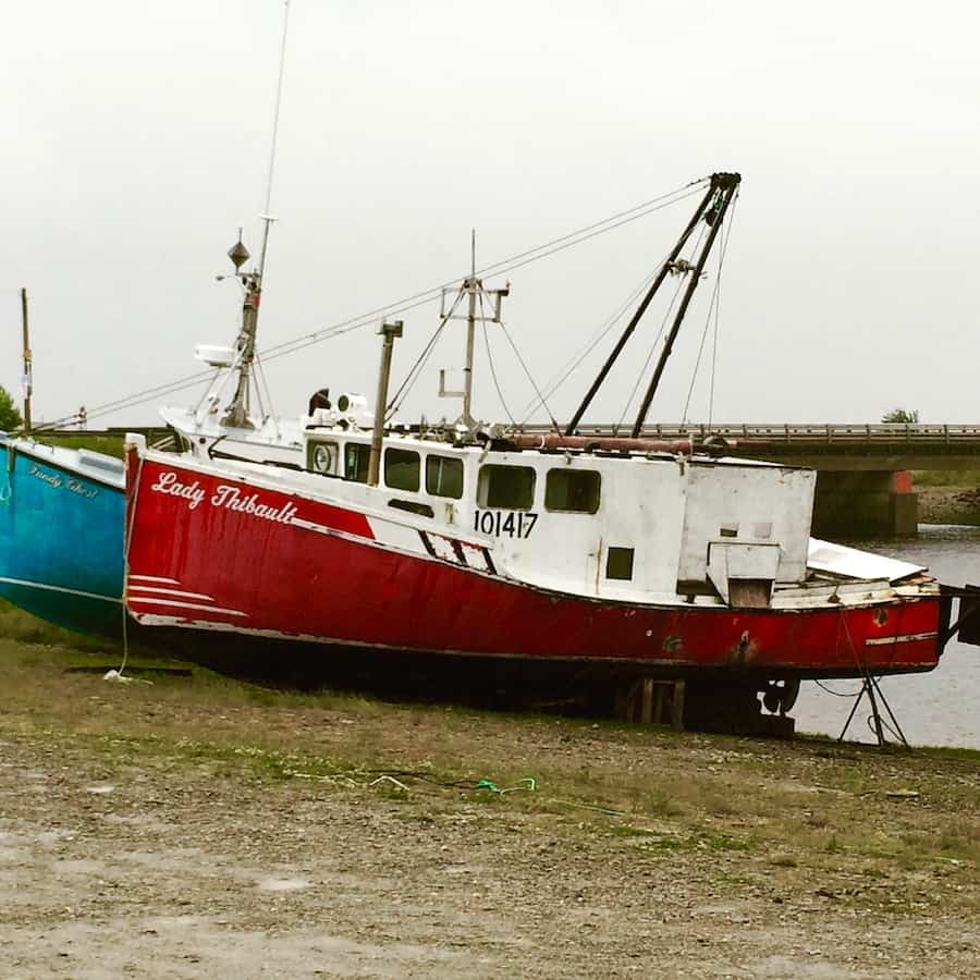 The Fishersman's Wharf in Alma. What to do at the Bay of Fundy with kids.