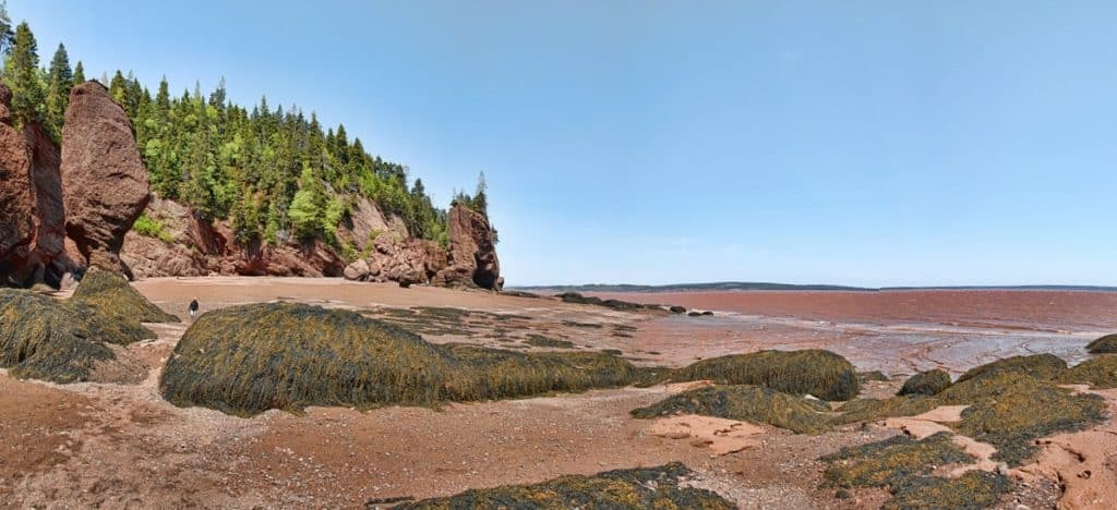 Walk on the ocean floor. What to do at the Bay of Fundy with kids.