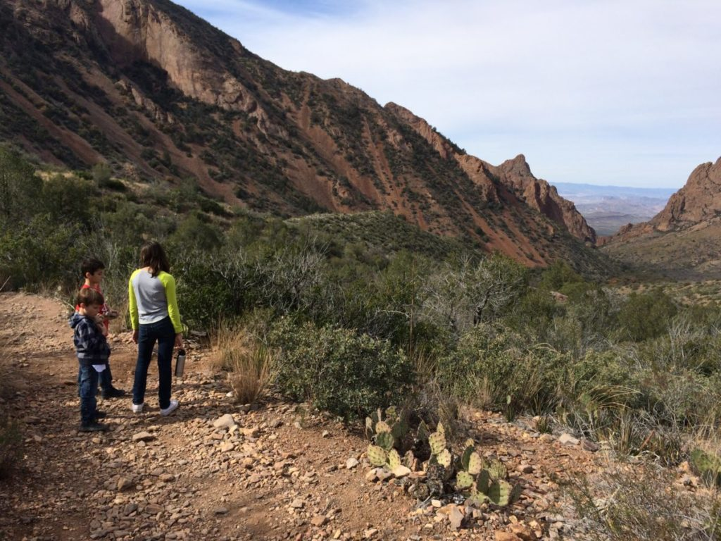 Hike along the Chisos Basin Trail. It's a great 2-mile hike for older kids. Big Bend National Park for kids, west Texas,