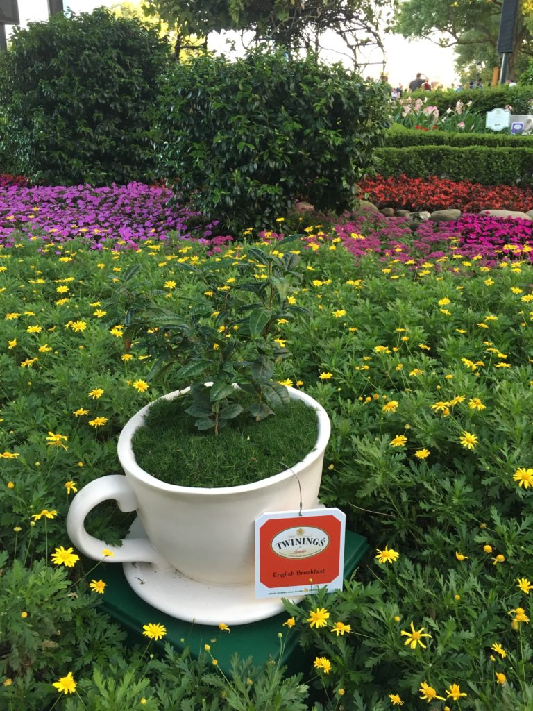 teacup gardens Epcot's Flower and Garden Festival with kids