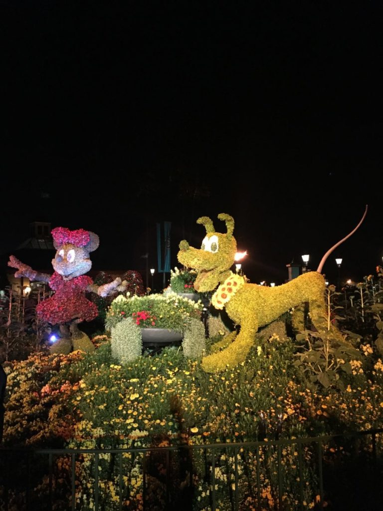 After the sun sets, Epcot's Minnie and Pluto topiaries glow against the inky, night sky. International Flower and Garden Festival