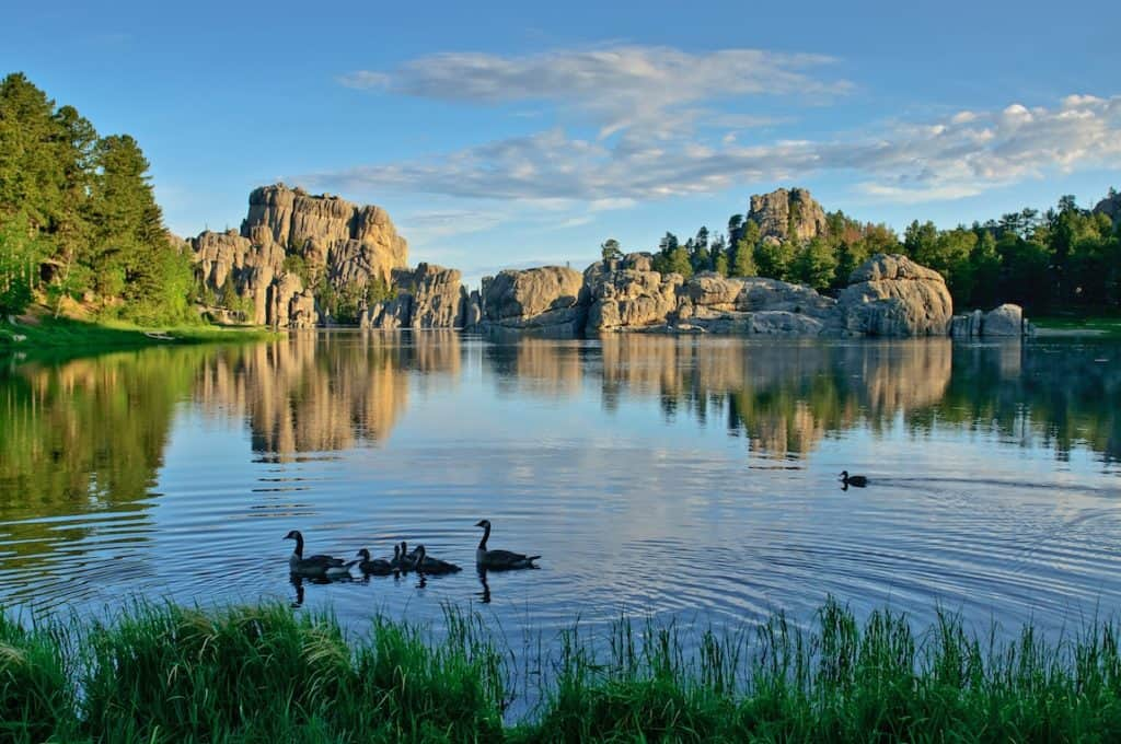 Family fun in the black hills south dakota carful of kids for Syvlan