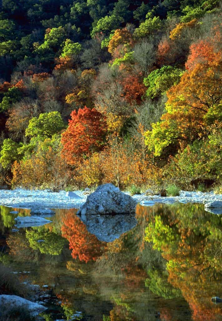 Best Places for Fall Color in Texas, Lost Maples State Natural Area, Fall color in Texas,