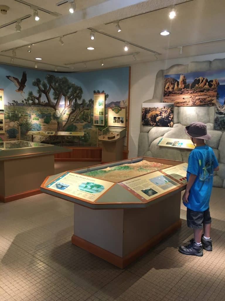 Discover Oasis Visitor Center at Joshua Tree National Park with kids.