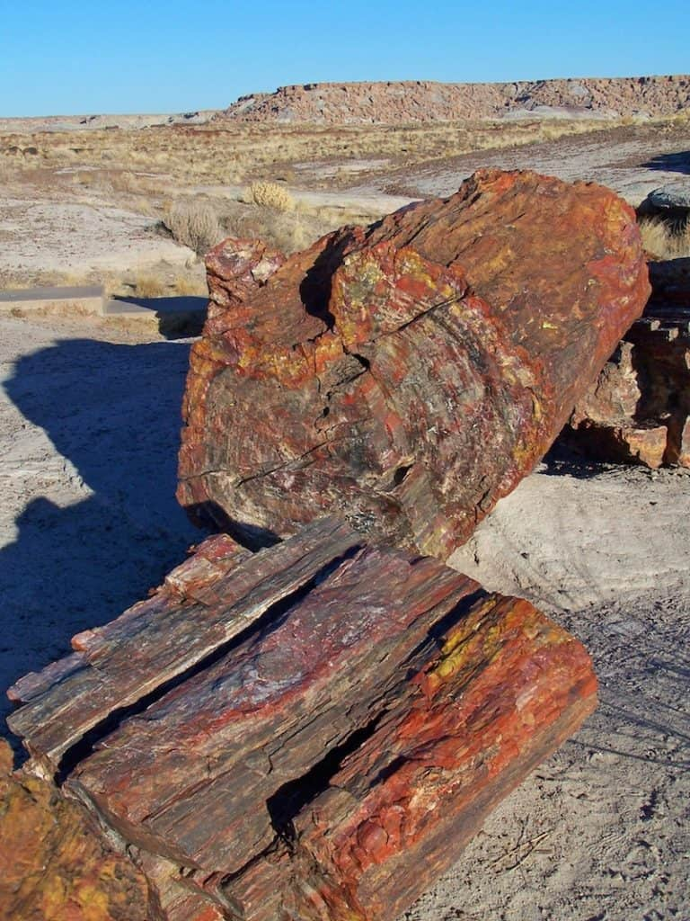 Explore the Arizona family road trip stop at Petrified Forest National Park.