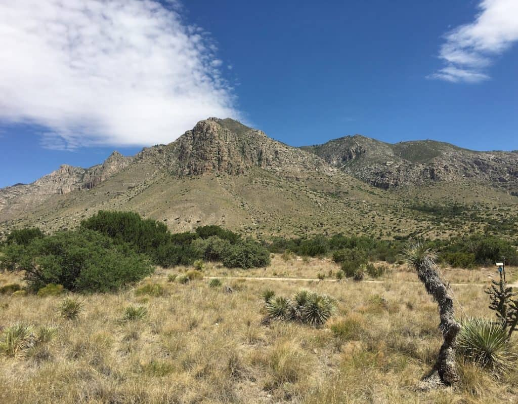 In the wilderness of West Texas, Guadalupe Mountains National Park.