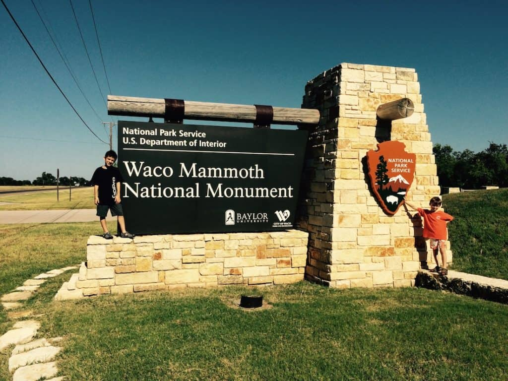 Discover Texas dinosaurs at the Waco Mammoth National Monument.