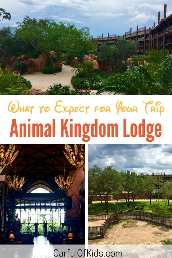 rooms overlooking the savanna, families can see animals roam from their balconies. Along with animals find a deluxe resort packing with unique dining, lots of family activities along with fabulous pools. #Disney #familytravel #AnimalKingdom