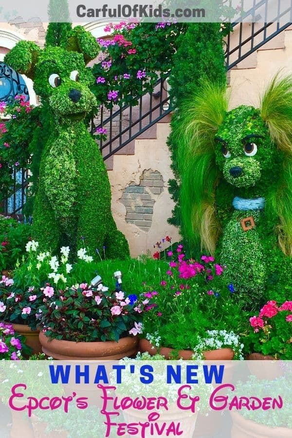 Explore Epcot during the International Flower and Garden Festival for the cutest topiaries like The Lady and The Tramp. Get all the 2020 details like where to find the topiaries to plan your trip to Walt Disney World in Orlando, Florida. #WDW #Disney #FlowerandGarden Where are the topiaries in Epcot | What to do at Epcot's Flower and Garden Festival