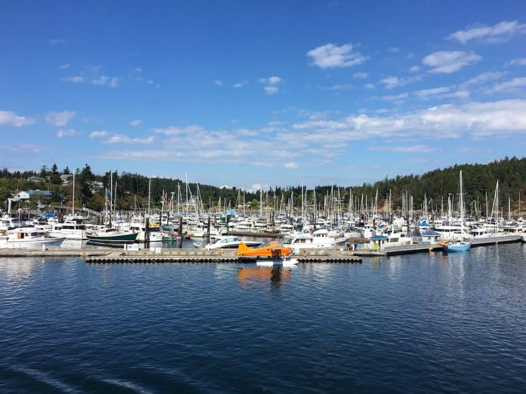 Explore Friday Harbor as one to the things to do on San Juan Island with kids.