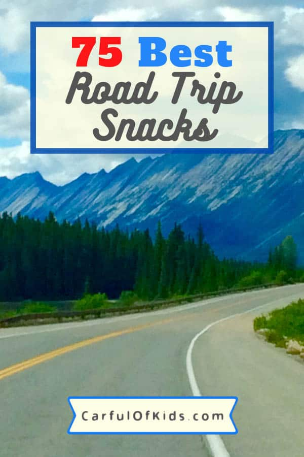 Got the Ultimate List of Road Trips Snacks. Got something for everyone, including the road tripping purists. #RoadTrip #SnackList What to Pack for a Road Trip | Must Have Snacks for Road Trips