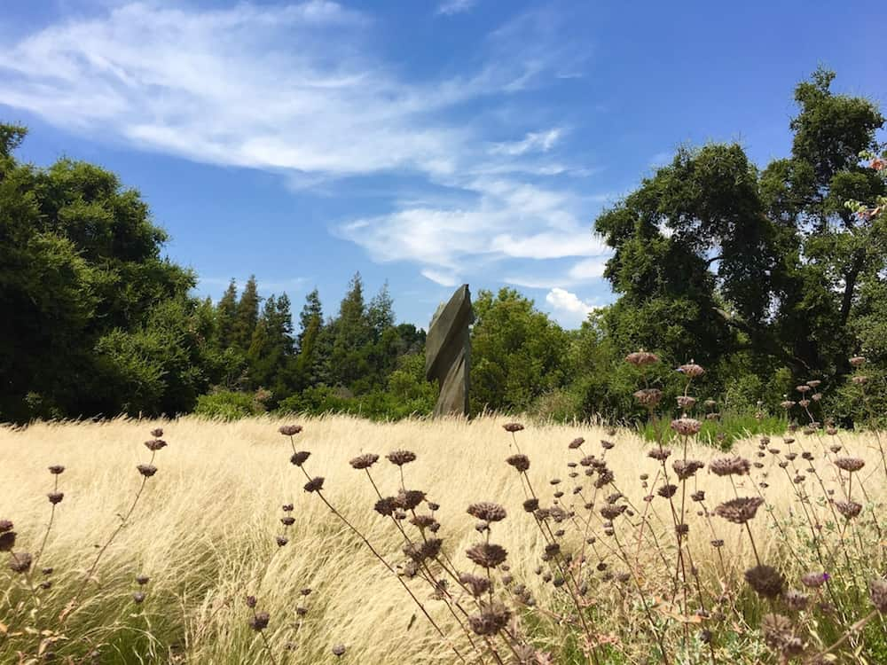 Visit Rancho Santa Ana Botanic Garden. Best Colleges in Southern California.