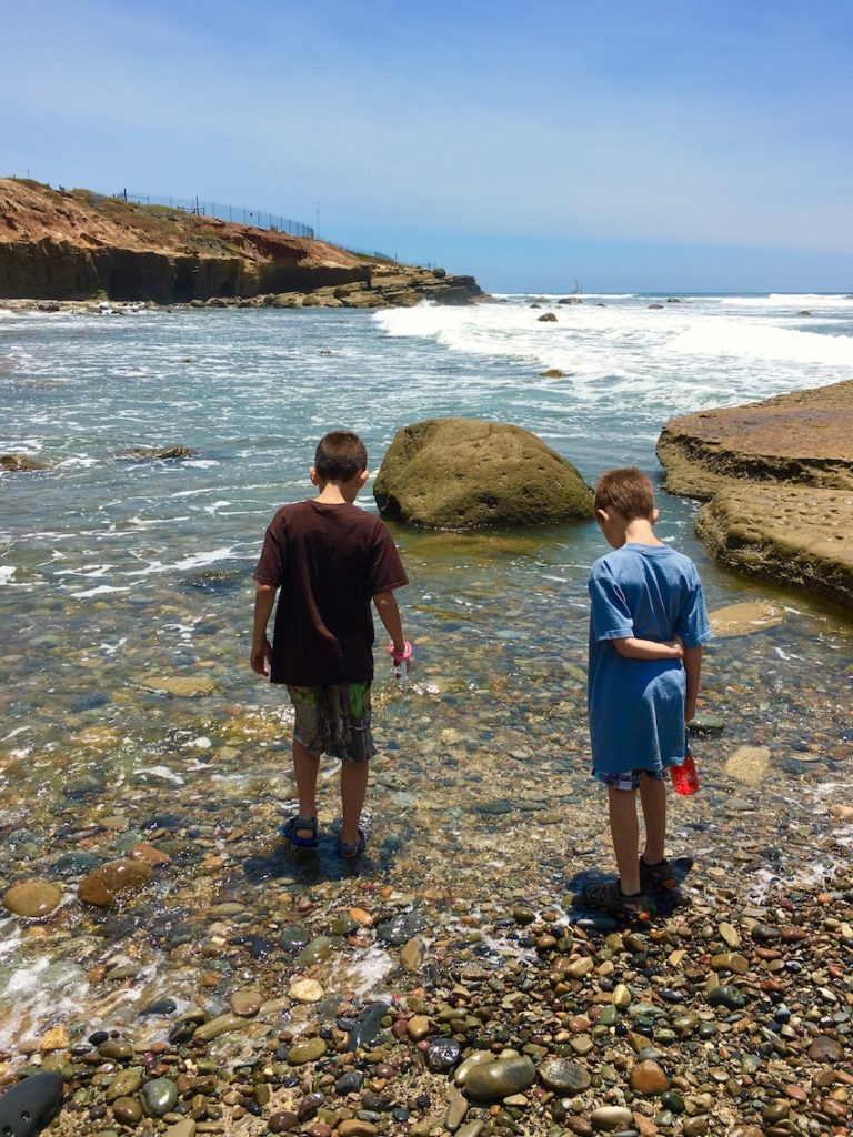 Tide Pools. Where to go in San Diego with kids.