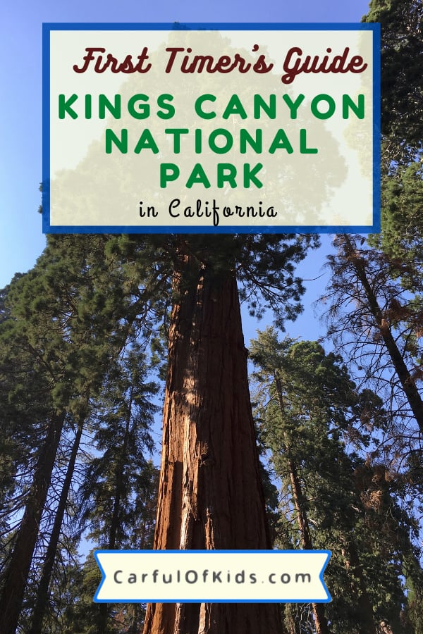 Find the Redwoods with fewer crowds in than neighboring Sequoia National Park. Get all the details you need like where to hike, what to do and where to stay for your getaway in California's Sierra Nevada Mountains. #NPS #NationalParks #California Best National Parks for Redwoods | National Parks in California | Where to find Redwood Trees