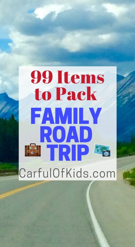 Load up the kids and explore the open road across North America. Got the ultimate list of emergency must haves for your car.