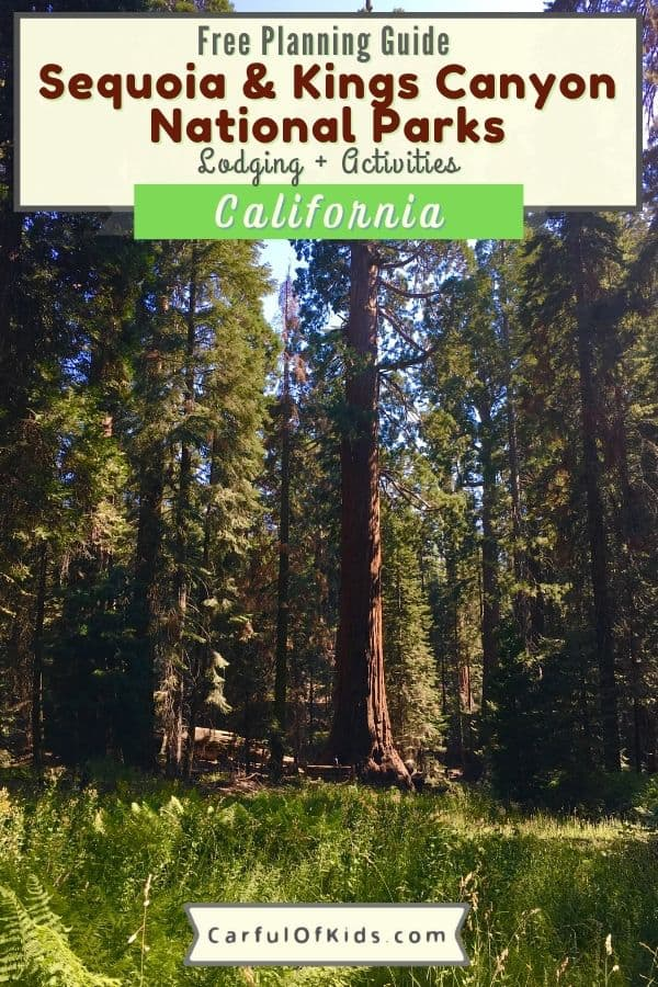 Find California's Redwoods and Sequoias with fewer crowds than neighboring Sequoia National Park. Get all the details you need like where to hike, what to do and where to stay for your getaway in California's Sierra Nevada Mountains. Best National Parks for Redwoods | National Parks in California | Where to find Redwood Trees in California | National Parks close to LA | Top destinations in California #NationalParks #California