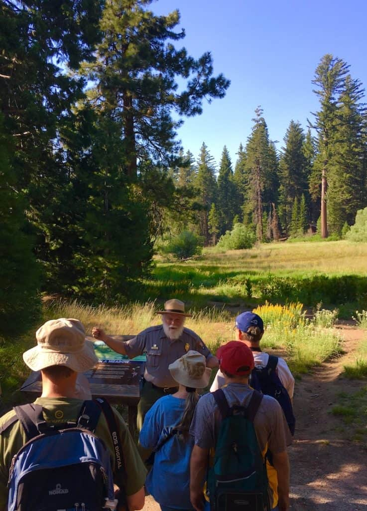 Ranger Programs. Where to see Redwoods in California with kids.