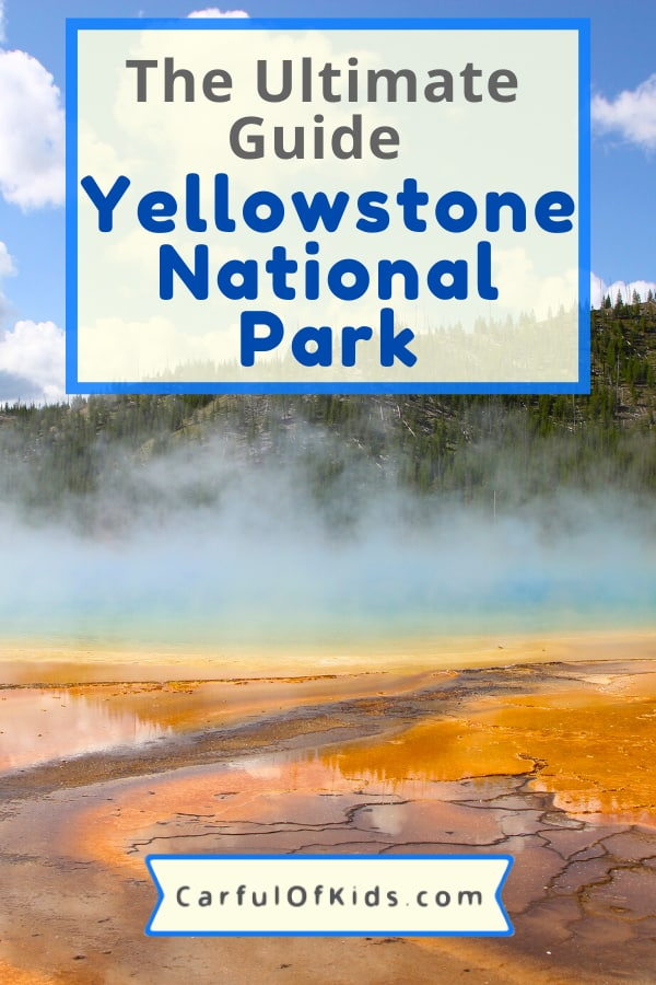 Visit a national park as big a Rhode Island this year. Yellowstone National Park has the world's largest concentration of geysers, iconic lodges and some of the best animal viewing in North America. Use the guide to plan your trip with all the best sights along with what to do with kids when you explore the first national park in the world. What to do in Yellowstone National Park | Where to Stay in Yellowstone National Park #NationalPark #Yellowstone