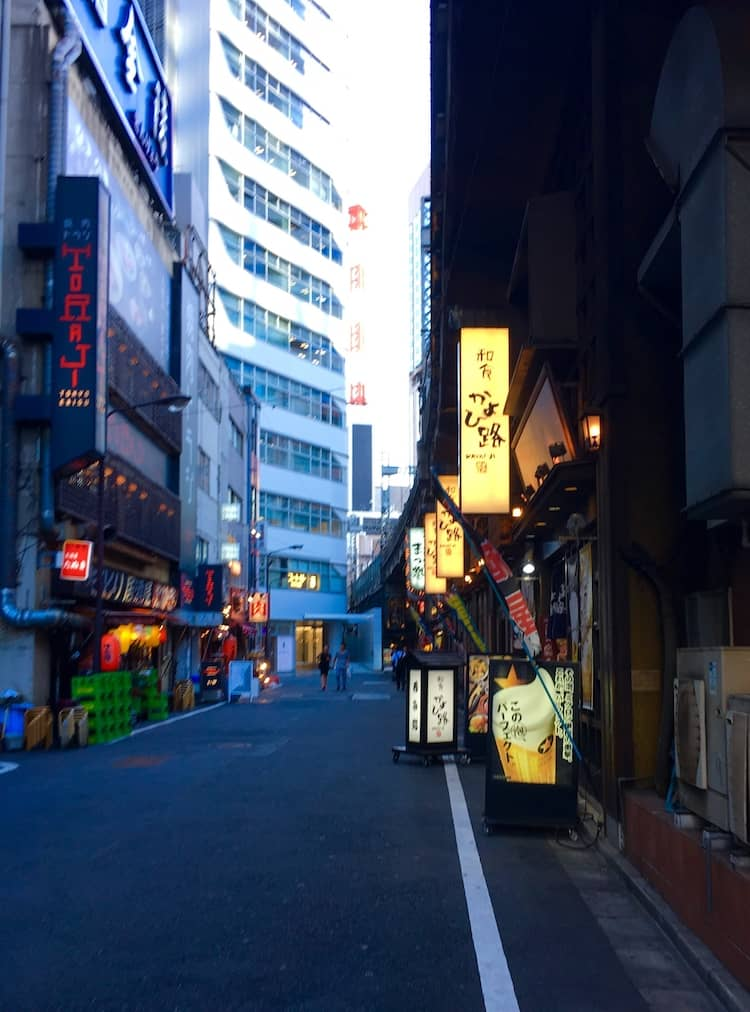 Yakitori Alley. Why taking a Tokyo Food Tour is helpful.