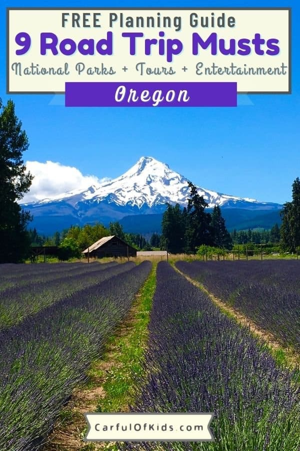 Explore the Pacific Northwest with nine picture perfect stops for your Oregon Road Trip. See forests, waterfalls, caves and volcanoes in this dynamic Oregon road trip itinerary. Where to go on an Oregon Road Trip | Best Stops on an Oregon Road Trip #Oregon #NationalParks