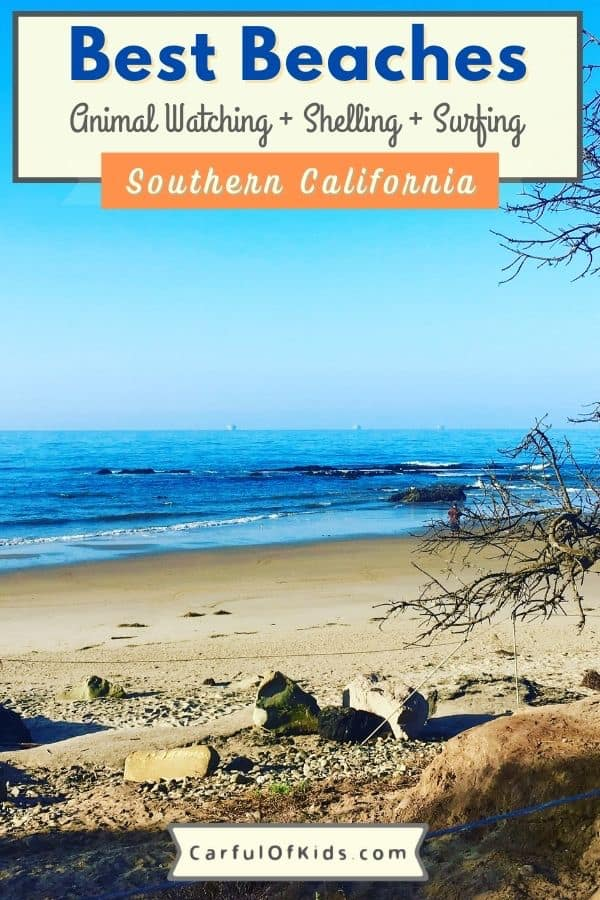 From San Diego to Cambria, find beaches for shelling, surfing or strolling. Get the details of your next beach day, like parking information. Best Beaches for Families in Southern California #Beaches #California