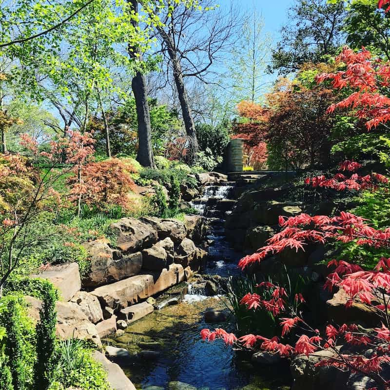 Dallas Arboretum, Things to do in Dallas with kids.
