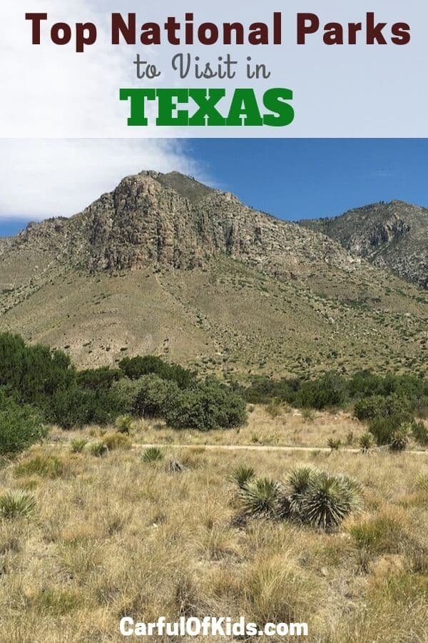 Texas offers a rich diversity in National Park Service sites, find a desert national park, the high point of Texas, along with UNESCO World Heritage Sites as National Parks in Texas. Read on for the top NPS sites in Texas #NPS #Texas |Texas National Parks