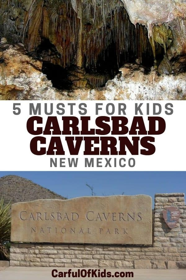 Explore one of the largest show caves in North America. Carlsbad Caverns in New Mexico can be explore on your own or on a Ranger Tour. Read on for the 5 musts for your visit. #NPS #NewMexico #Carlsbad National Parks | Caverns