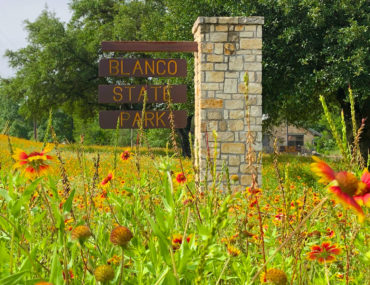 15 Places to Find Texas Wildflowers