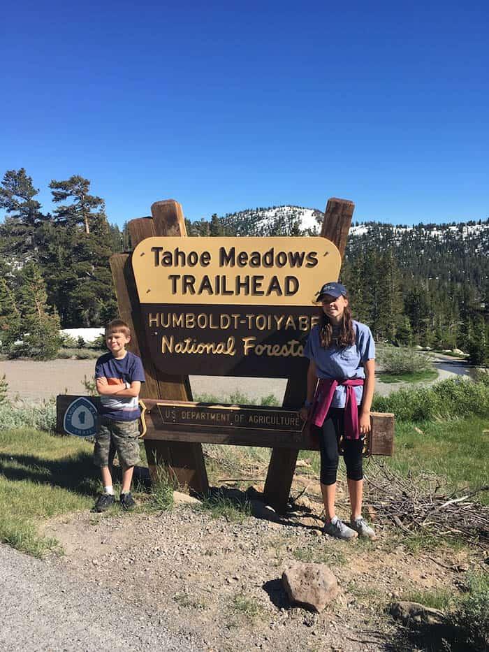 Tahoe Meadows.