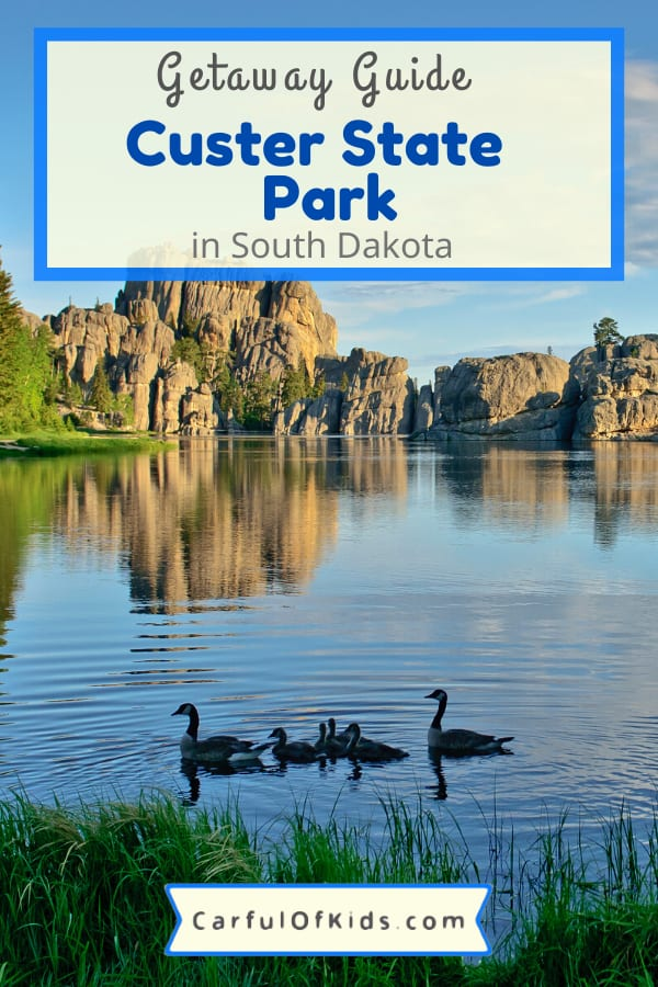 Discover Custer State Park in South Dakota's Black Hills for a getaway in the outdoors. Take a wildlife Jeep tour or a trail ride, rent a kayak or canoe, drive along one of several scenic routes. Find out where to stay from luxury cabins to campsites, what to do and where to hike during your trip. What to do in South Dakota's Black Hills | What to do in Custer State Park | Cabins in South Dakota #SouthDakota #Custer #Camping