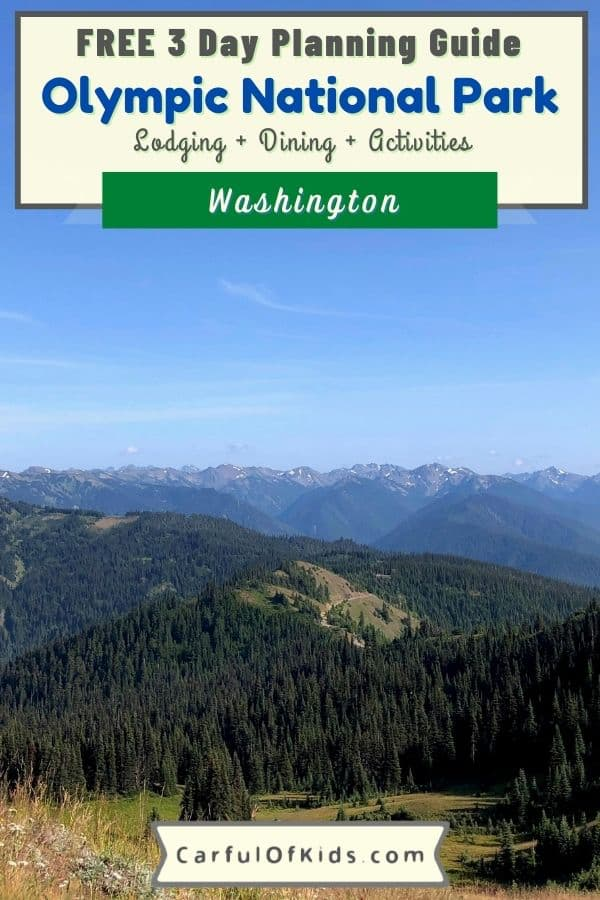 Explore Washington's Olympic National Park for a weekend getaway packed with mountaintop wildflowers, rainforest hikes, pristine beaches with tide pools, and lake lodges with tours and boats. Even find a hot springs resort inside the Pacific Northwest park. Get all the information you need to plan your trip to a top US National Park like hotels, cabins and camping, best hikes and what to pack in this comprehensive guide. What to do in Olympic National Park   Where to stay near Olympic National Park   Best 3 Day Itinerary for Olympic National Park   National Parks near Seattle #NationalParks #Washington