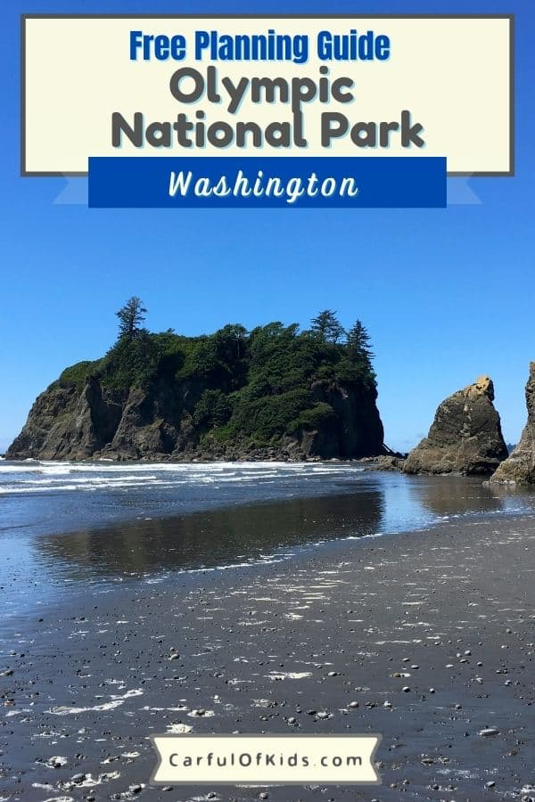 Explore Washington's Olympic National Park for a weekend getaway packed with mountaintop wildflowers, rainforest hikes, pristine beaches with tide pools, and lake lodges with tours and boats. Even find a hot springs resort inside the Pacific Northwest park. Get all the information you need to plan your trip to a top US National Park like hotels, cabins and camping, best hikes and what to pack in this comprehensive guide. What to do in Olympic National Park | Where to stay near Olympic National Park | Best 3 Day Itinerary for Olympic National Park | National Parks near Seattle #NationalParks #Washington