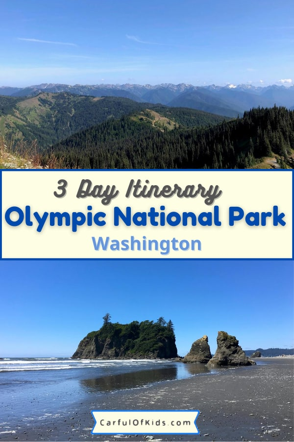 Explore Washington's Olympic National Park for a weekend getaway packed with mountain top wildflowers, rainforest hikes, pristine beaches with tide pools, and lake lodges with tours and boats. Even find a hot springs resort inside the Pacific Northwest park. Get all the information you need to plan your trip to a top US National Park like hotels, cabins and camping, best hikes and what to pack in this comprehensive guide. #NPS #NationalParks #Washington #OlympicNationalPark What to do in Olympic National Park | Where to stay near Olympic National Park | Best 3 Day Itinerary for Olympic National Park | National Parks near Seattle