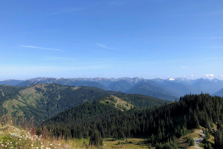 Hurricane Ridge ONP