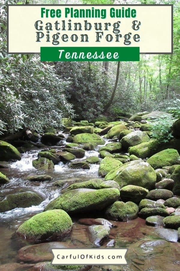 Head to the Smokies in Tennessee for a four-season getaway centered around outdoor adventure and unique attractions. Home to Dollywood, Great Smoky Mountains National Park along with the Ober Gatlinburg Mountain Resort. Also find lodging, dining, live entertainment and shopping in the gateway towns just north of the National Park. What to do in the Smokies   What do to in Pigeon Forge   Where's Gatlinburg   Smoky Mountain cabins #Tennessee #PigeonForge #Gatlinburg