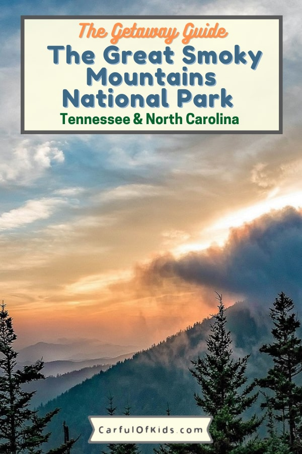 The largest protected area on the East Coast of the U.S. visit a national park overflowing with waterfalls, wildflowers, mountains and animals. Get all the details on what to do while exploring the part that's both in Tennessee and North Carolina. Find hiking, biking, horseback riding, fishing and more in this comprehensive guide. #NPS #NationalParks #Smokies What to do in the Great Smoky Mountains National Park | Best Hikes in the Great Smoky Mountains | Where are the Sychronous Fireflies in the U.S. | Top Waterfals in the Smokies