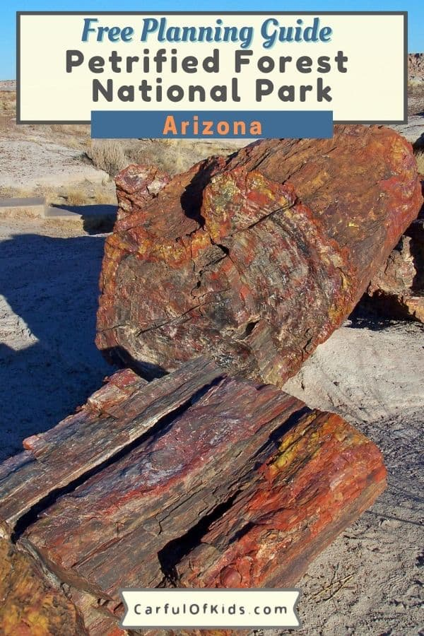 Located in Northern Arizona, explore Petrified Forest National Park to see crystal trees, the Desert Inn along with part of famed Route 66. As a drive through park, see the painted desert, do some hiking and grab a glimpse of desert animals. #NationalParks #Arizona