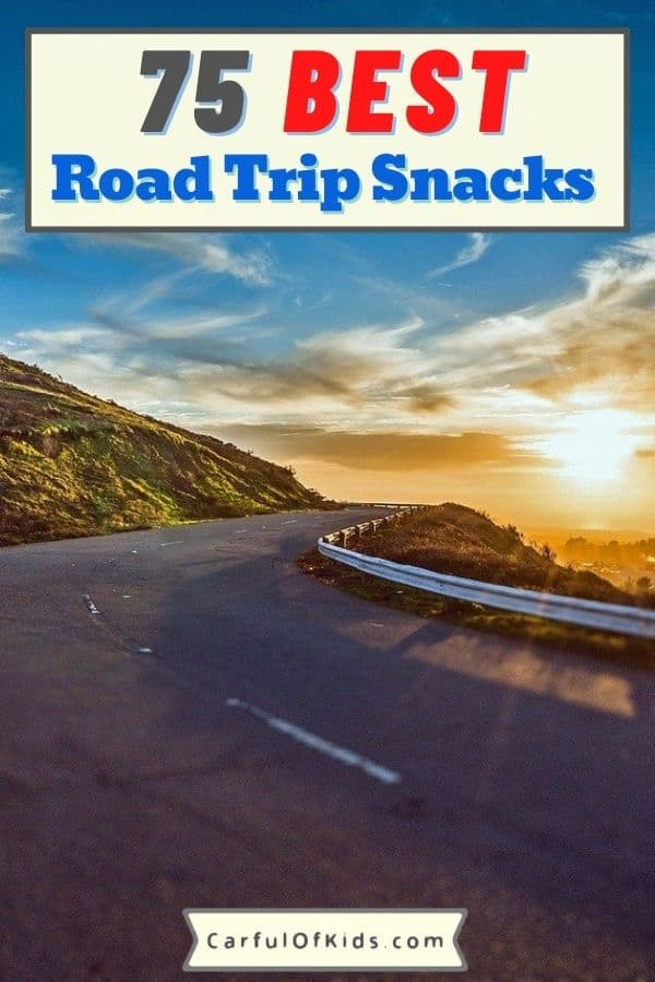 Got the Ultimate List of Road Trips Snacks. Got something for everyone, including the road tripping purists. What to Pack for a Road Trip | Must Have Snacks for Road Trips #RoadTrip
