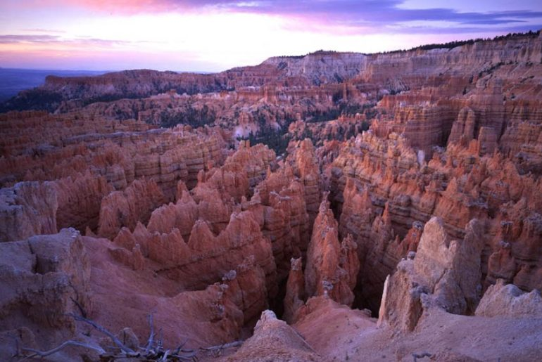 Discover the pink spires at Bryce Canyon National Park. Photo Credit: National Park Service